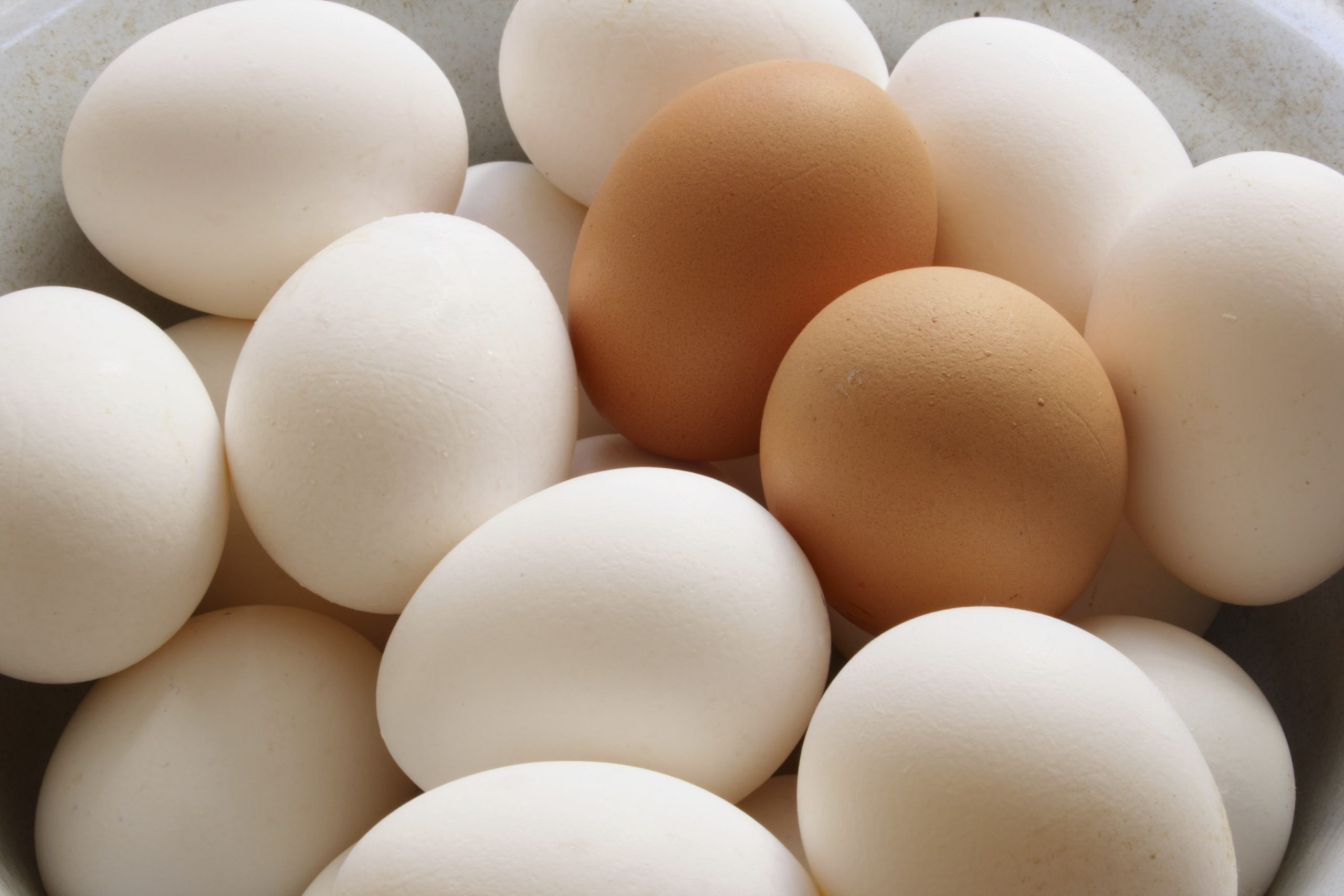 Pile of Eggs Background Image